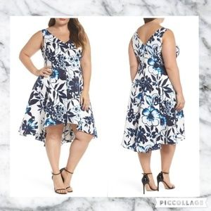 Eliza J NWT 20W Blue Floral Fit and Flare Dress